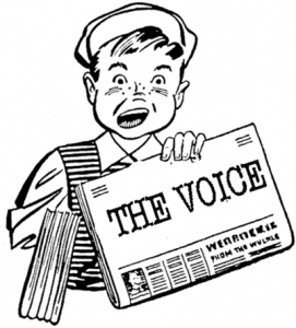 The_Voice_Logo_Picture.353192819