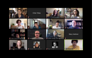 Participant Faces on Videochat