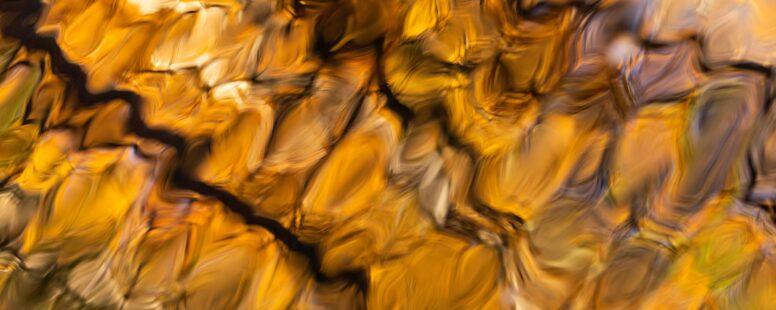 Oct 1 Event Recap: Adjuncts Reimagining Digital Pedagogy without Burnout